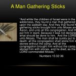 lessons from man gathering sticks on the sabbath