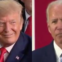 The trumpslide is coming - Biden will lose big